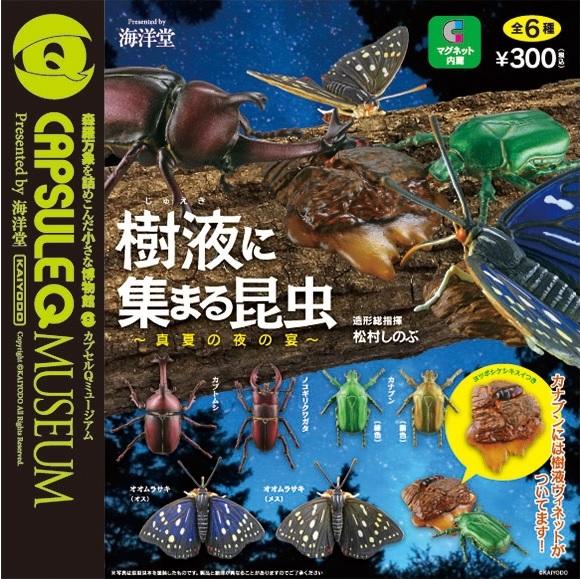 08樹液に集まる昆虫 ~真夏の夜の宴~