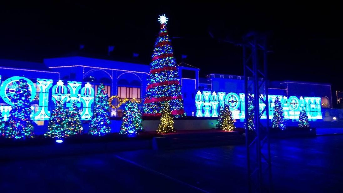 『光の森(クリスマスツリー)』
