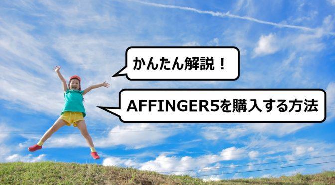 【かんたん解説】AFFINGER5(アフィンガー5)テーマを購入する方法&手順~ブログ初心者でも確実な買い方解説~